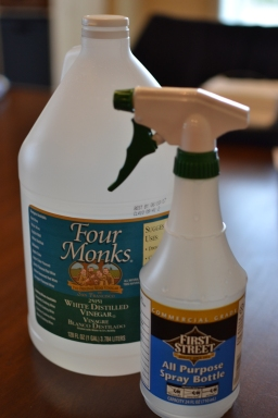 Two ingredient DIY kitchen cleaner