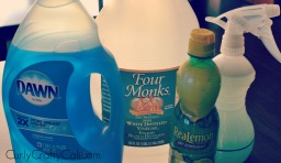 DIY All-Purpose Bathroom Cleaner